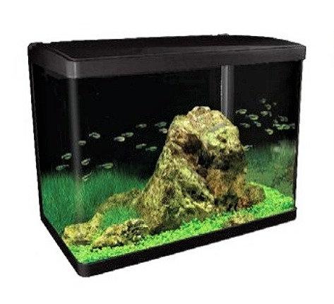 Aqua One Lifestyle 94 Litre Aquarium Fish Tank