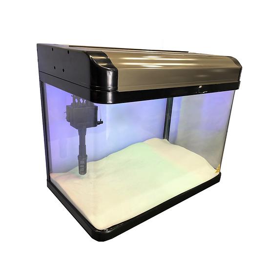 NEON 80L Curved Glass Fish Tank Aquarium w/ Filter, Pump & Light