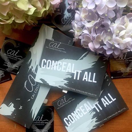 concealer-palettes.jpg