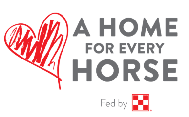 A Home for Every Horse.png