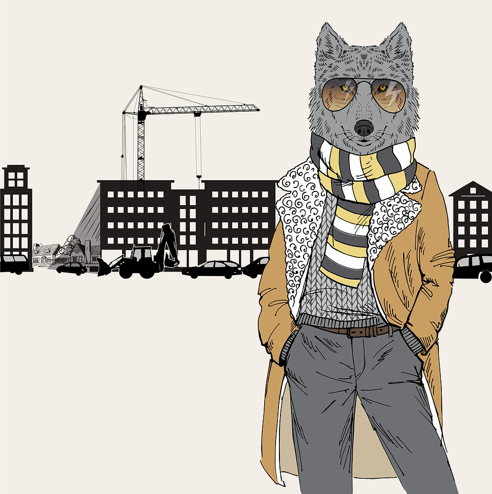 Yimby Denver: A Tax Wolf in Sheep's Clothing