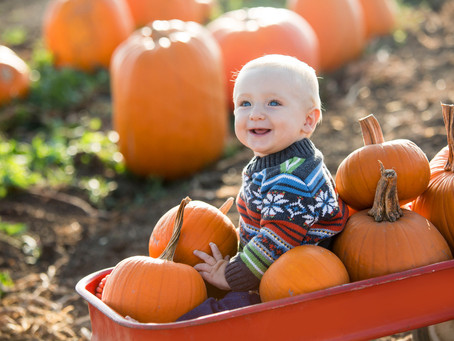 Ways to Celebrate Autumn in the Puget Sound!
