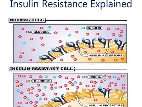 Insulin resistent? Hvad er nu det..