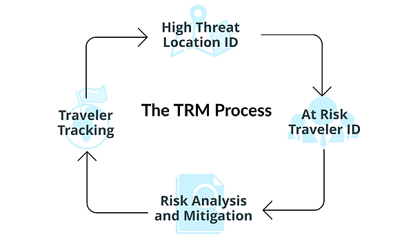 TRM Cycle.PNG
