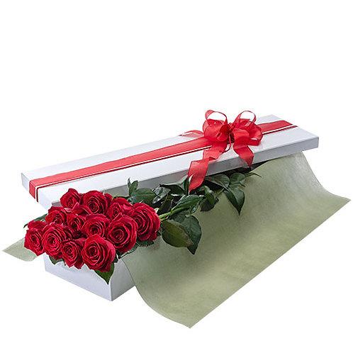 Dozen long stem roses - Valentines