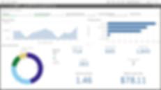 ro analysis.jpg