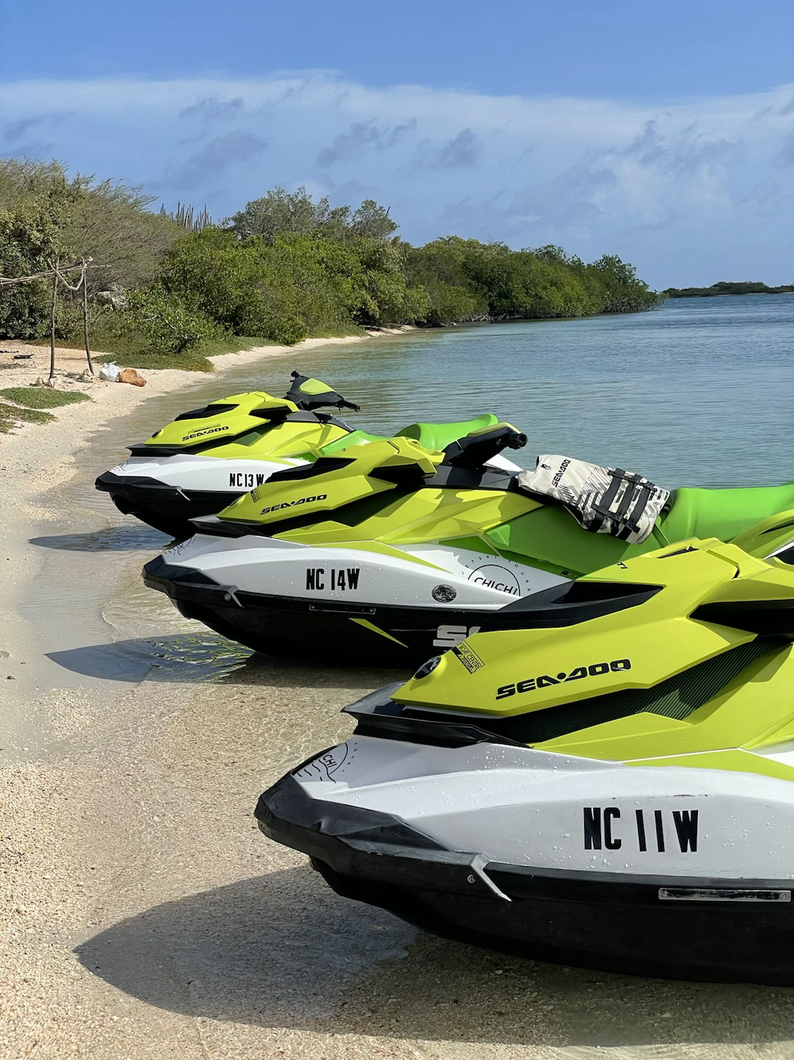 Chill Ride 3 Jetskis - 1P each - 1 hour