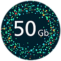 50Gb Data Size-01-01.png