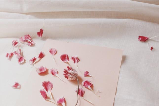 【中階課程】花開花落,3D立體刺繡