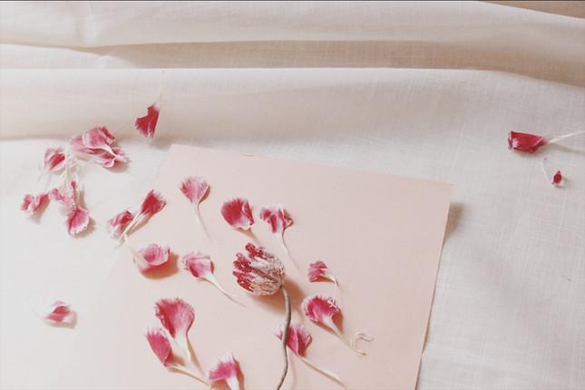 【中階課程】立體刺繡 - 花開花落