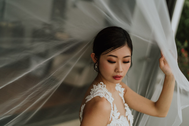 A breath-taking picture of Emi in her wedding gown under the veil.