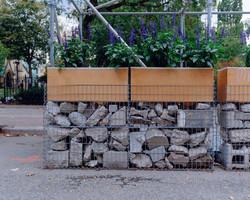 Urban Garden - Toronto