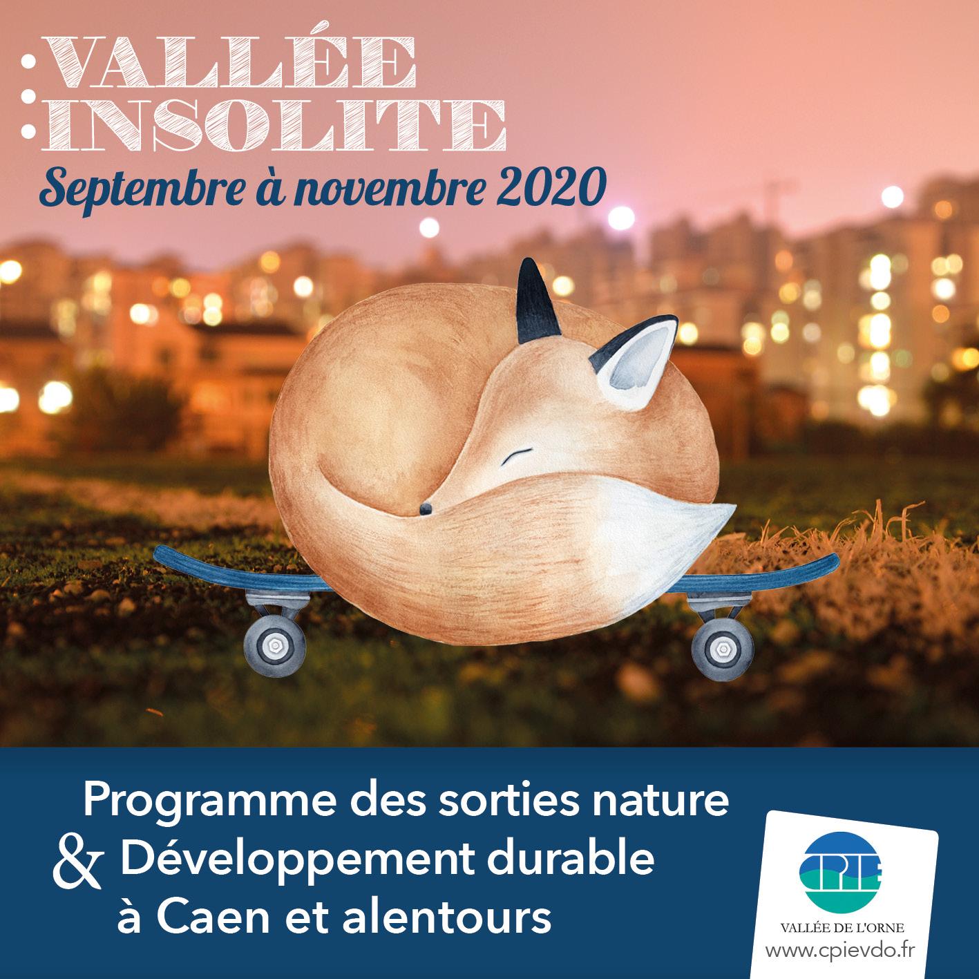 Vallée Insolite 2020 #3
