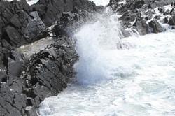 Galley Head 3 280718