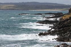 Galley Head 2 280718
