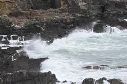 Galley Head 4 280718
