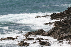 Galley Head 1 280718