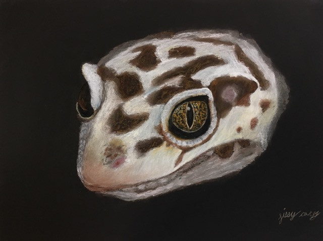 Gecko Meets Leopard