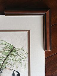 Framing 1.JPG