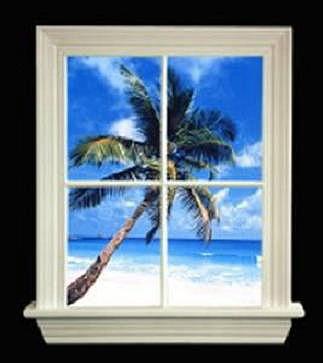 The WindowLite
