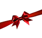 —Pngtree—festive gift bow_304996.png