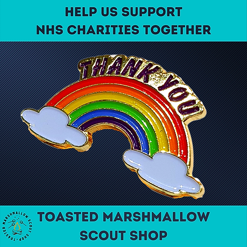 Thank You Rainbow Pin Badge (30mmx17mm) NHS / Keyworker Tribute