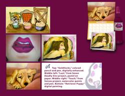 8Illustrations.jpeg