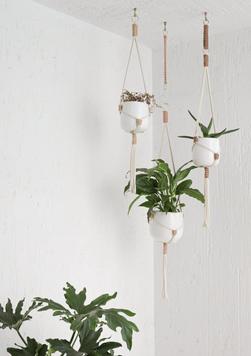 Hanging Planters by Milena Fischer