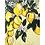 Thumbnail: Lemon Drop