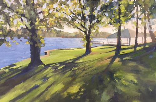 Evening Shadows at the Lake