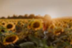 Portrait, Outdoorshooting, Sonnenblumen, Sonnenuntergang, Sommershooting, People Fotografie, Fotografin in Wien und Niederösterreich