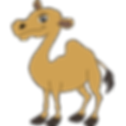 camel-icon.png
