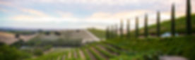 grapes026.jpg