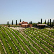The vineyards are just steps away!