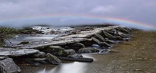 Rainbow Tarr banner.jpg