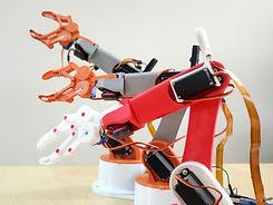 Evodyne_Robotics_Roboticarm.jpg