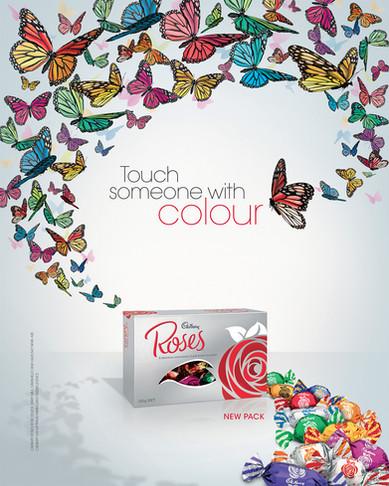 Cadbury. Roses