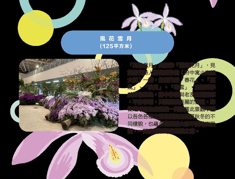 介紹區_中-20.png