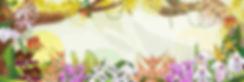 主視覺首頁-01.jpg