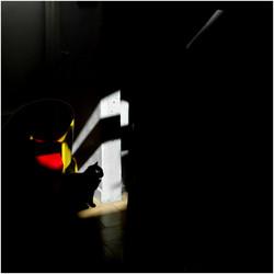 """""""Le chat noir"""" Hors série #2 OPENEYE + Photo de la semaine """"lense.fr"""" FISHEYE 5 mai 2019"""