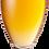 Thumbnail: South Coast Summer Ale