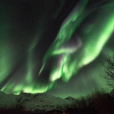 Photo : Sylvie Pilet. Séjour en Norvège pour l'observation d'aurores boréales.