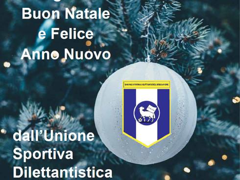 Tanti auguri di Buon Natale e di un felice anno nuovo!