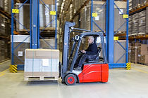 Forklift Licence training Courses Maitland
