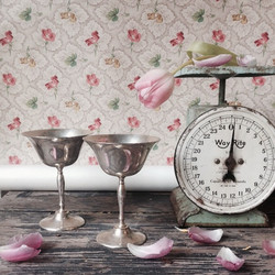 {Silver Champagne Coupes}