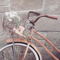 {Rusty Cruiser Bicycle}
