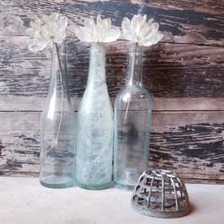 {Blue Bottles}