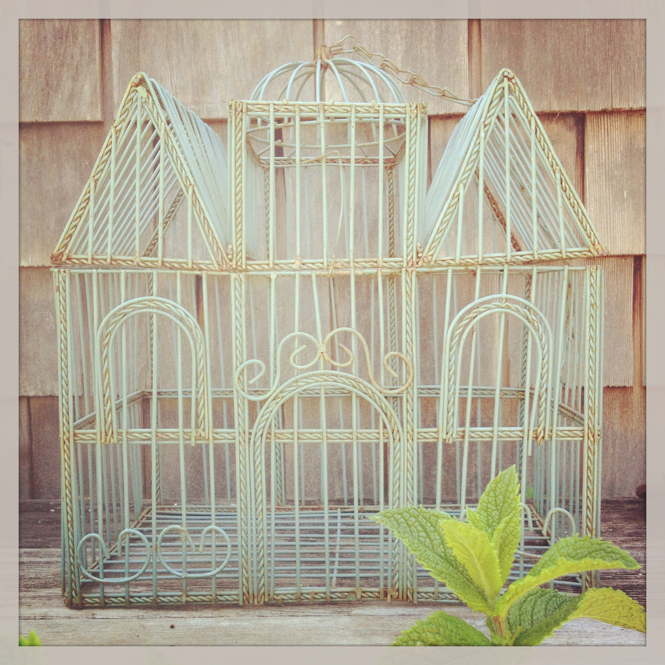 {Teal Wire Birdcage - $12}