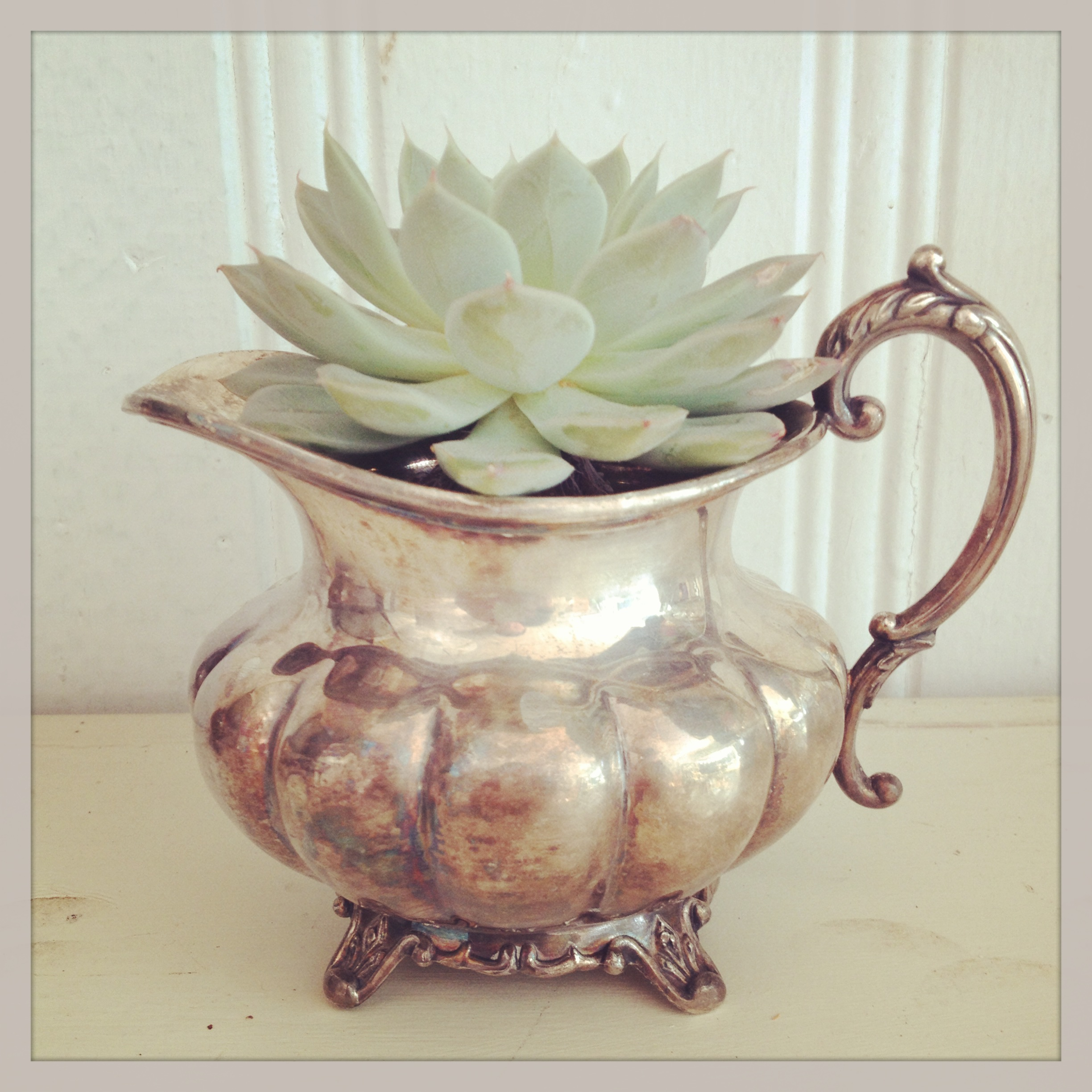 {Small Silver Pitcher}