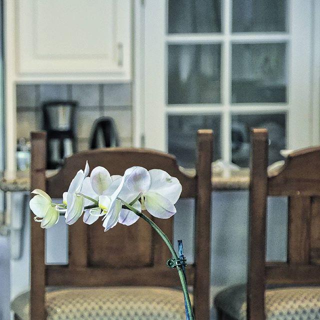#detail #socal #nikon #kitchendesign #gourmetkitchens #contemporary #modern #modernliving #art #artg